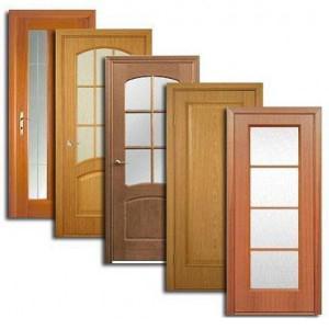 Двери, дверные блоки Кондопоги