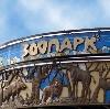 Зоопарки в Кондопоге